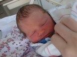 Matt, Melissa, Lena, Isaiah, Christmas 07, Birth 08 003